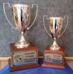 Gold Metal Cup Trophy on Wood Base Trophies | Traditional
