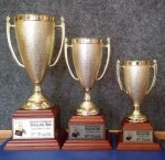 Gold Plastic Cup with Wood Base Trophies | Traditional